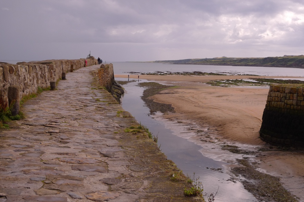 Harbour at St Andrews
