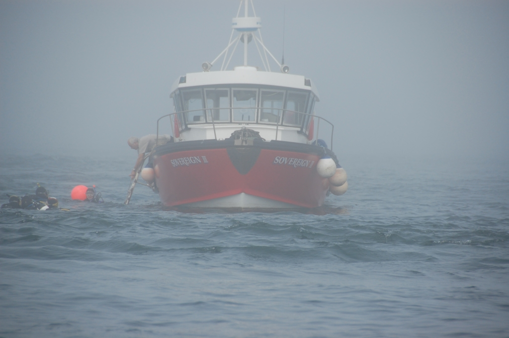 Sea mist in Farnes