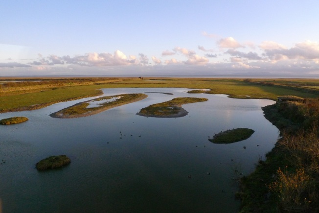 Caerlaverock reserve