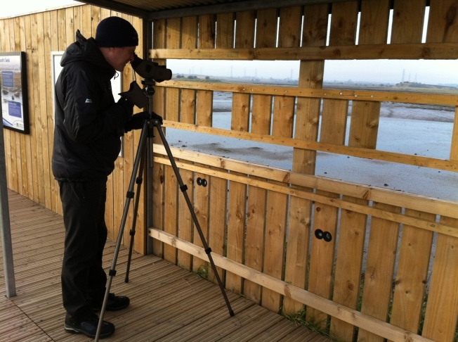 Tony looking for seals at Greatham Creek