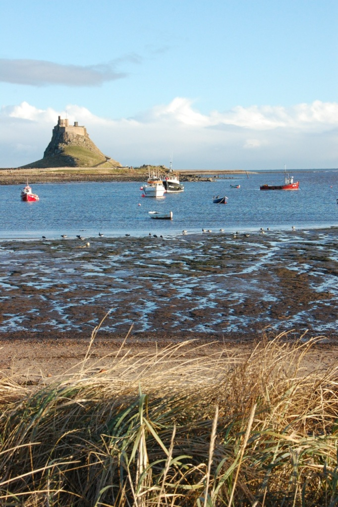 Boats on Holy Island