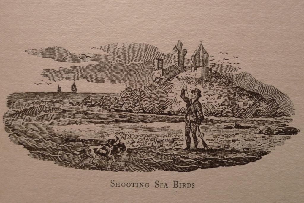 Thomas Bewick illustration