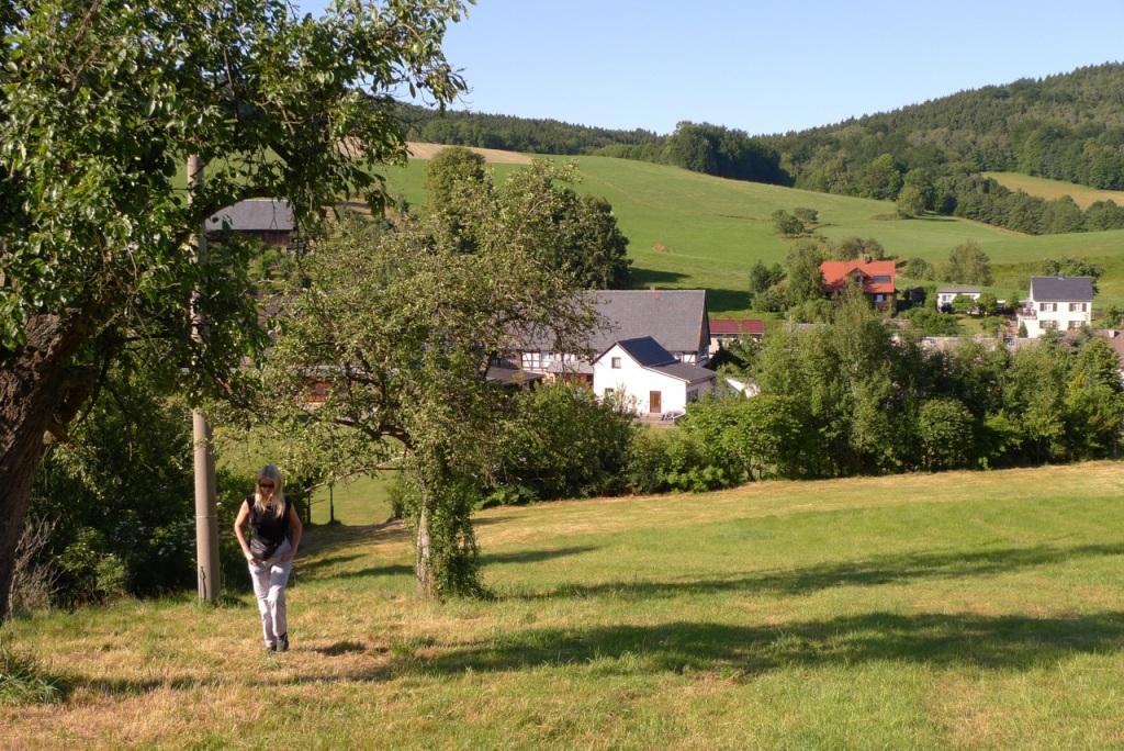 Tammy in Saxony