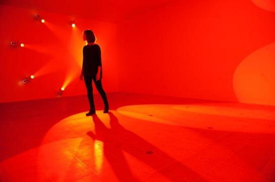 Light Show: A walk on the light side
