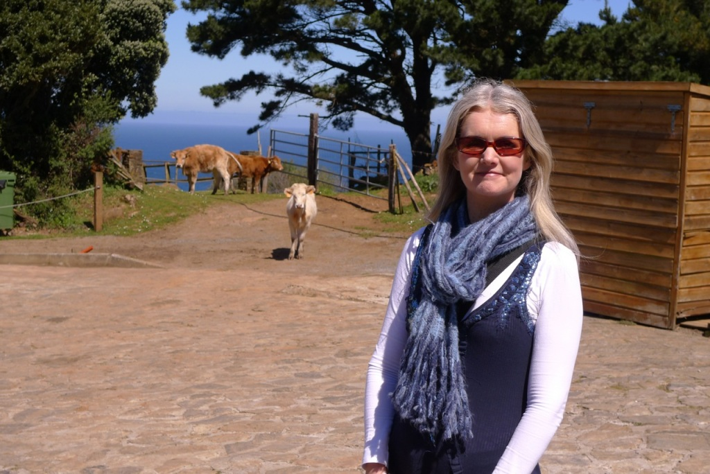 Tammy with roaming cattle