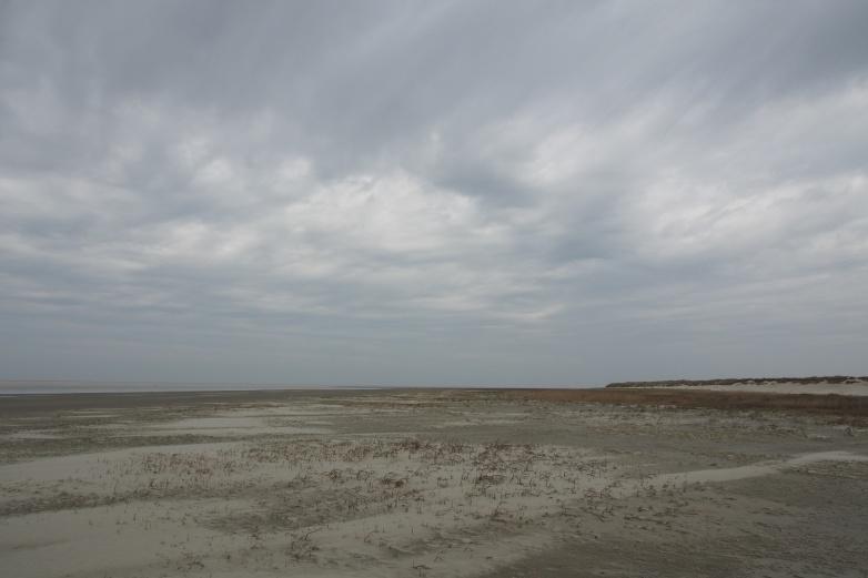 Frisian Islands