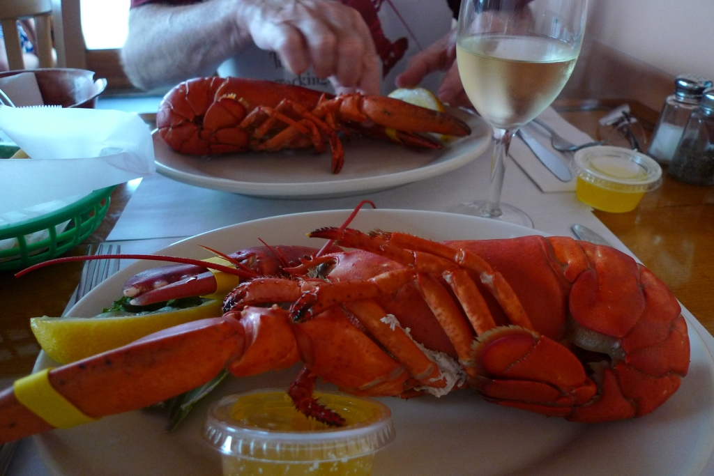 Lobster eating in New England