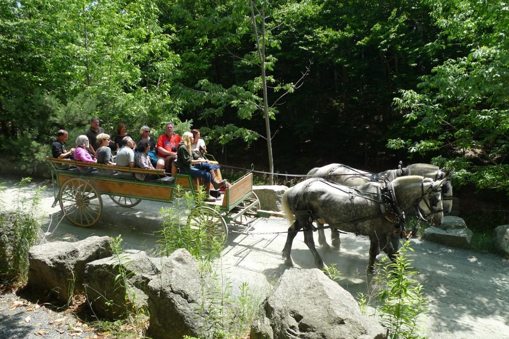 Carriage ride Acadia