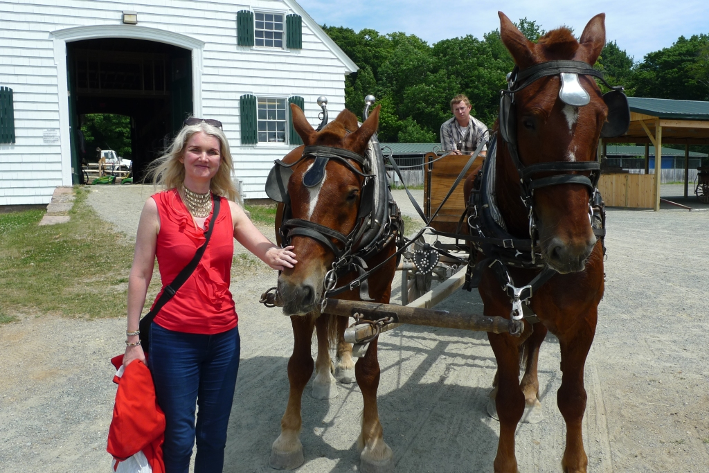 Horse and carriage ride in Acadia