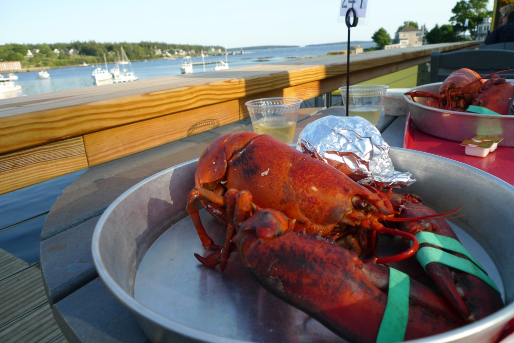 Lobsters in Maine - Thurston's shack