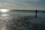 Shoreside