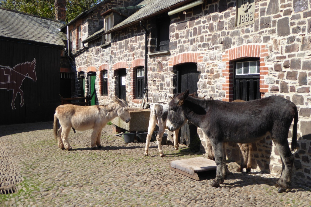 Clovelly donkey stables