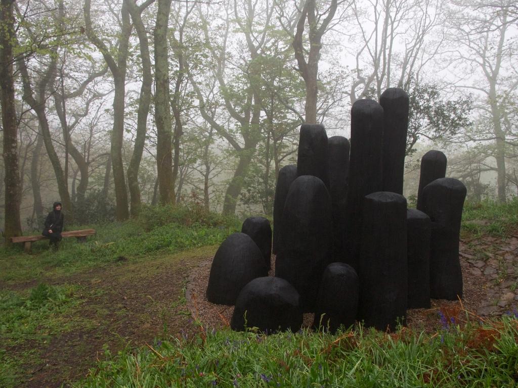 Tremenheere Sculpture Gardens i