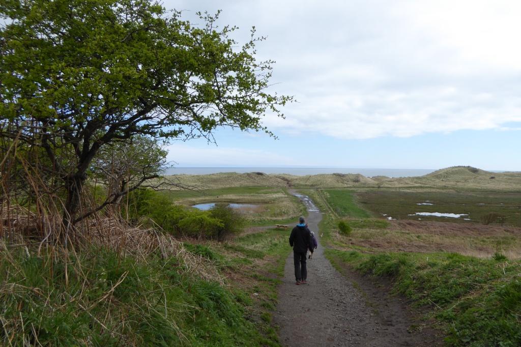 Warkworth golf course and Amble walk