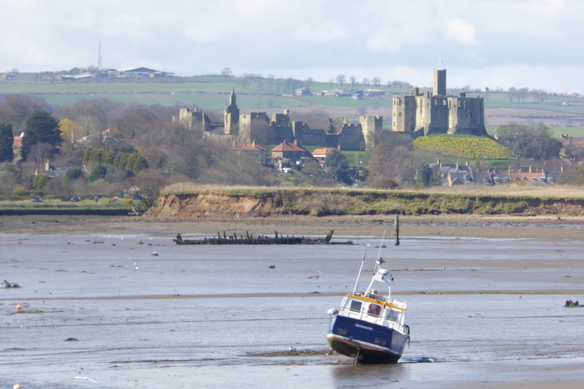 Coastal walks - Amble - Fish and Ships