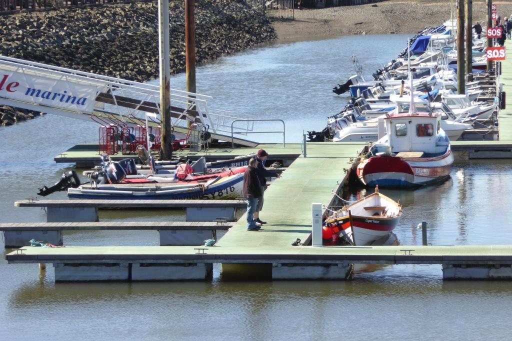 Amble Marina boats