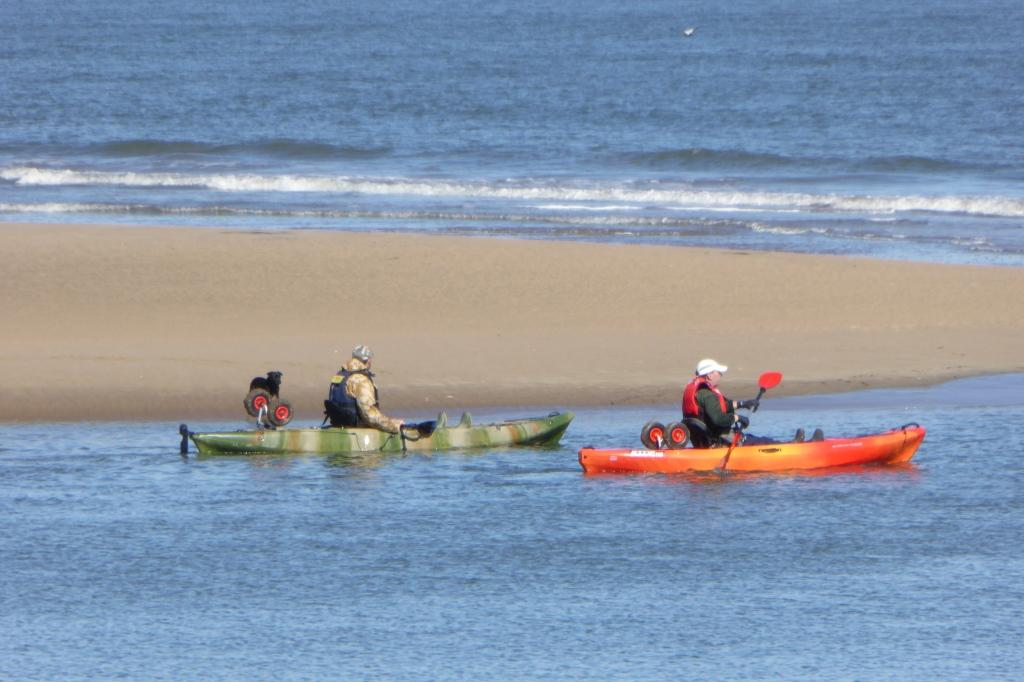 Kayaking and caneoing at Amble