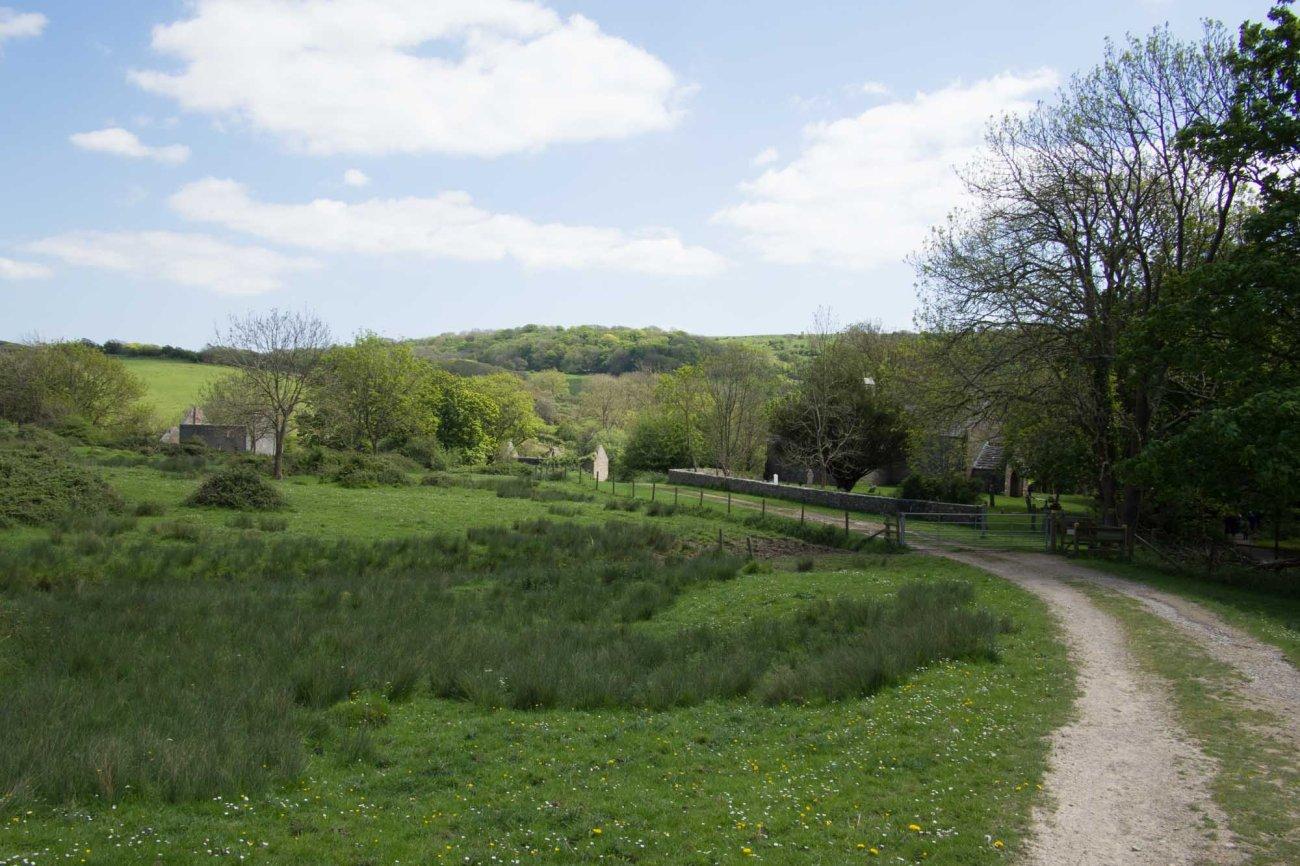 tyneham_landscape