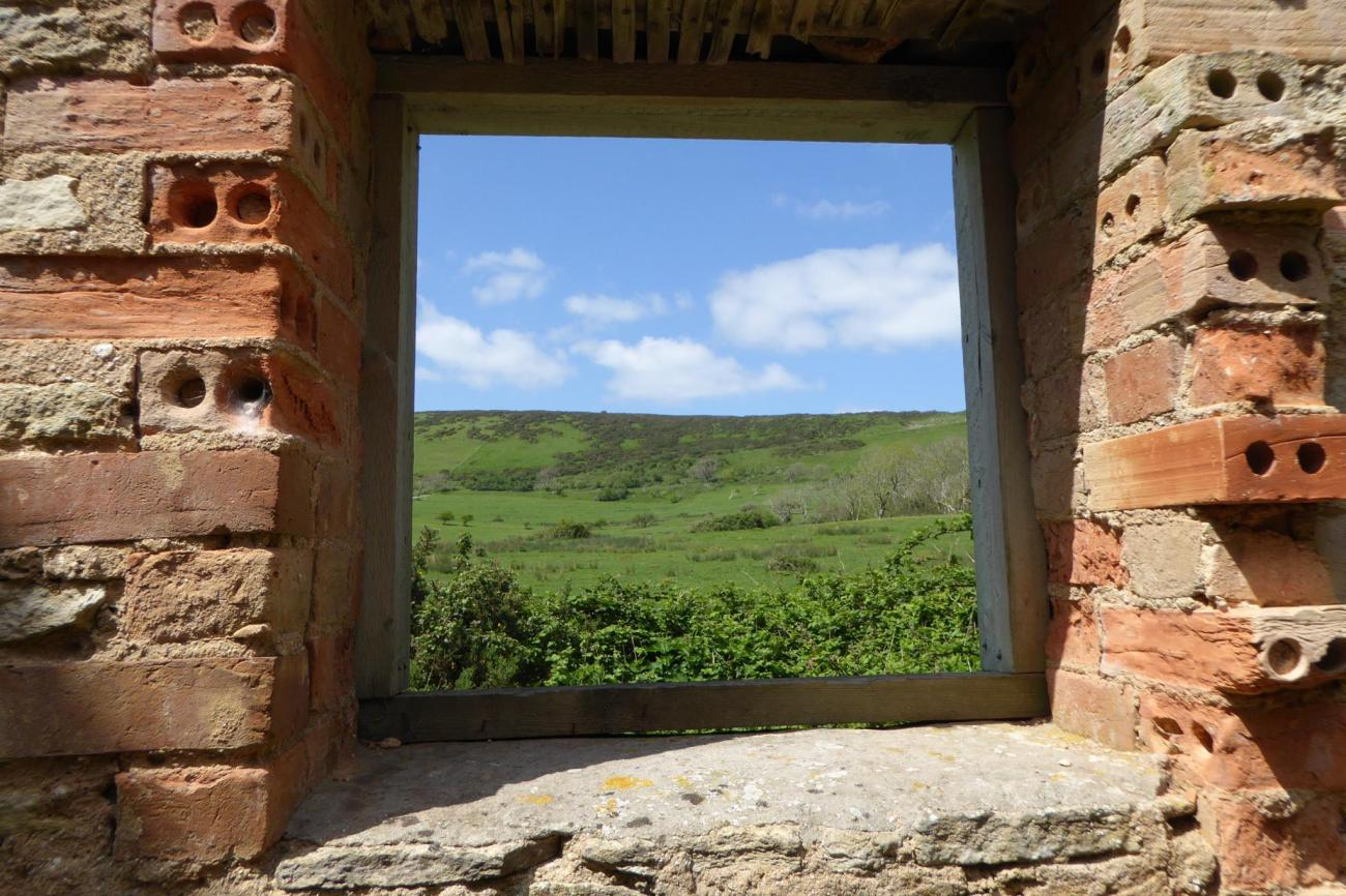 new_tyneham_window