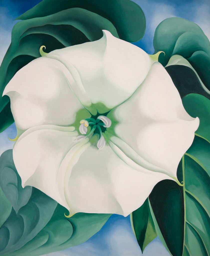 Georgia O'Keeffe Jimson Weed/White Flower No. 1, 1932 Oil on canvas 48 × 40 in. (121.9 × 101.6 cm) Framed: 53 in. × 44 3/4 in. × 2 1/2 in.