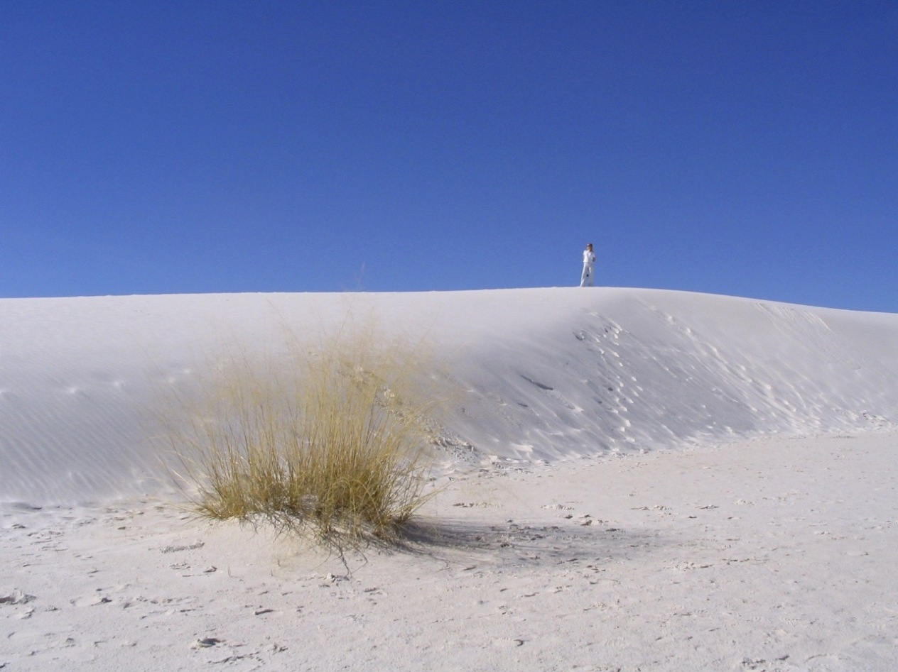 New Mexico White Sands