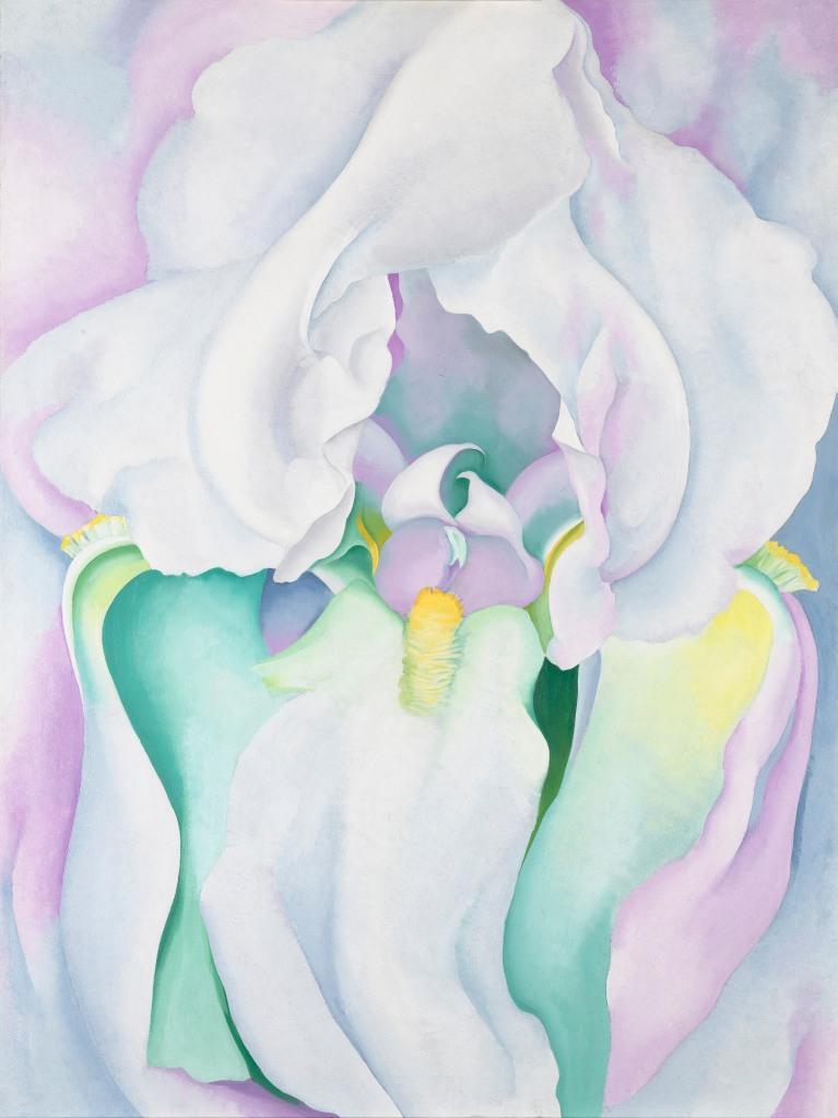 White Iris O'Keeffe