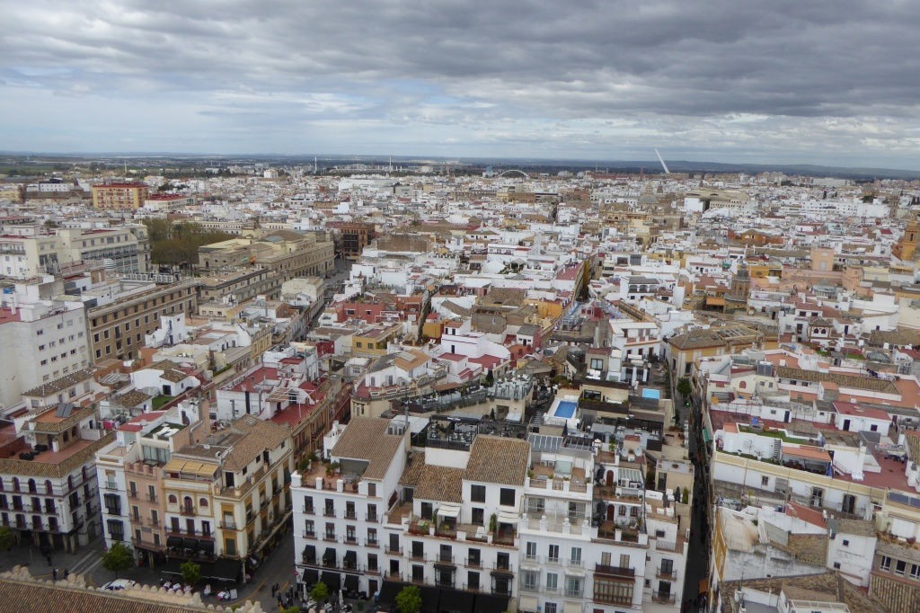 Seville Cathedral views