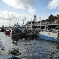 North Shields Heritage Walk - Fish, Ships and Lighthouses