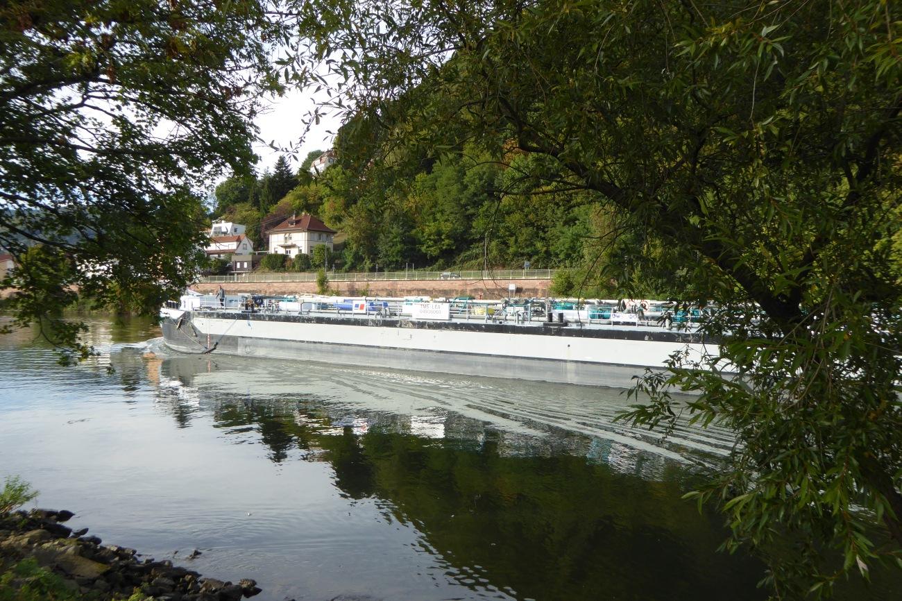 Heidelberg river boat