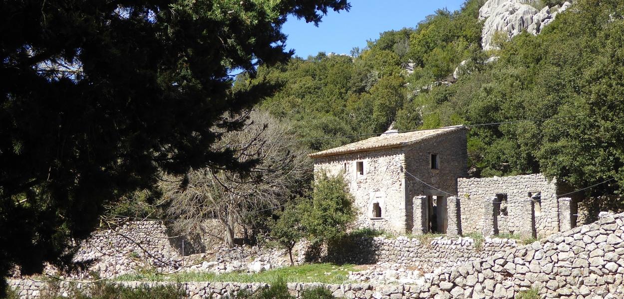 Lluc Mallorca
