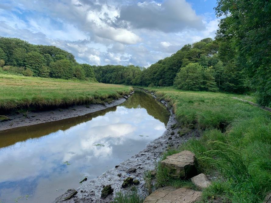 Holywell Dene Northumberland
