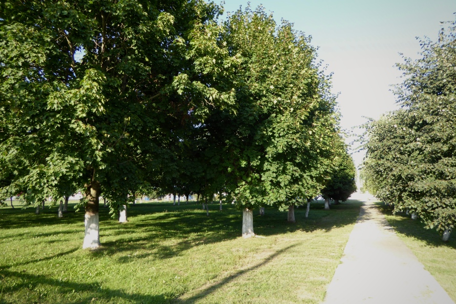 Vasilishok Jewish site