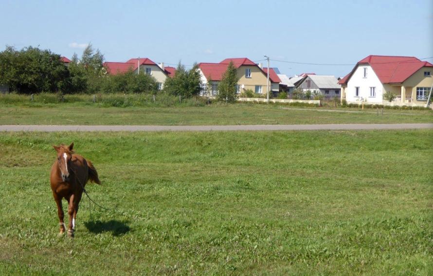 Vasilishok village
